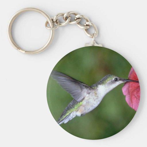 Ruby-throated Hummingbird (female) with petunia Keychain