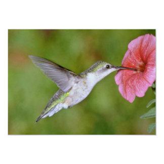Ruby-throated Hummingbird (female) with petunia Pi 5x7 Paper Invitation Card