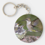 Ruby-throated Hummingbird (female) with young Key Chains