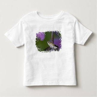 Ruby-throated hummingbird in flight at thistle 2 shirt