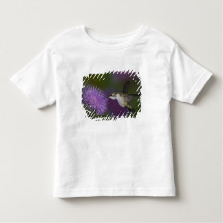 Ruby-throated hummingbird in flight at thistle toddler t-shirt