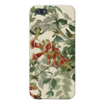 Ruby-throated Hummingbird iPhone 5 Covers