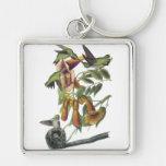 Ruby-throated Hummingbird, John Audubon Key Chain