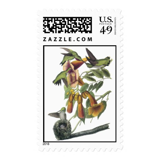 Ruby-throated Hummingbird, John Audubon Postage Stamp