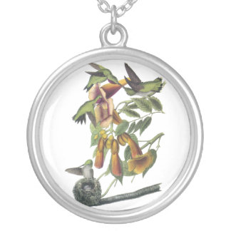 Ruby-throated Hummingbird, John Audubon Silver Plated Necklace