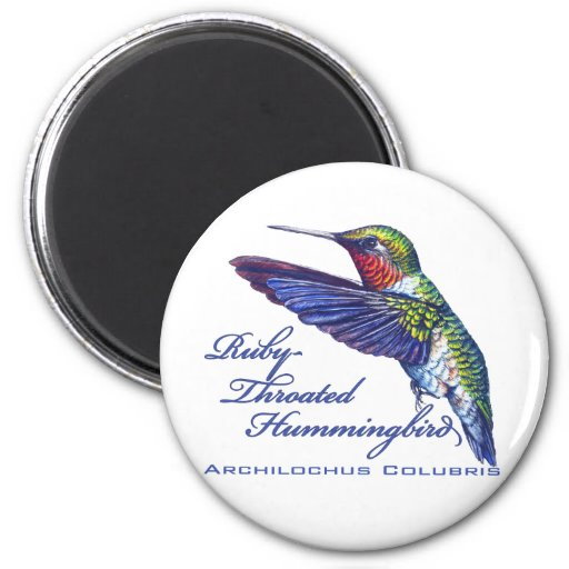 Ruby Throated Hummingbird Latin 2 Inch Round Magnet