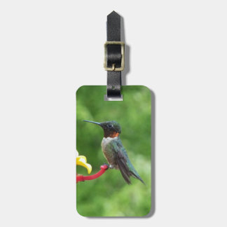 Ruby-Throated Hummingbird Tags For Bags
