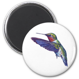 Ruby Throated Hummingbird Magnet