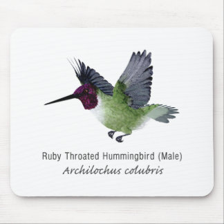 Ruby Throated Hummingbird Male with Name Mouse Pad