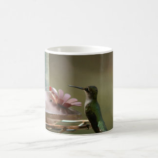 Ruby-throated Hummingbird, Mug. Coffee Mug