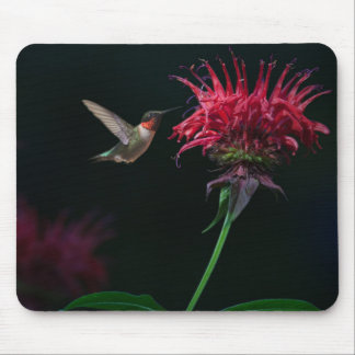 Ruby-throated Hummingbird on Bee Balm Mouse Pad