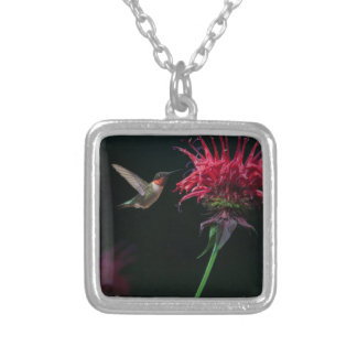 Ruby-throated Hummingbird on Bee Balm Square Pendant Necklace