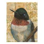 Ruby Throated Hummingbird Personalized Letterhead