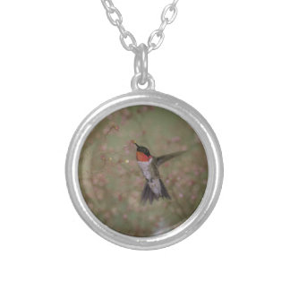 ruby throated hummingbird silver plated necklace
