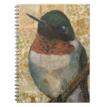Ruby Throated Hummingbird Spiral Note Books