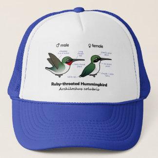Ruby-throated Hummingbird Statistics Trucker Hat