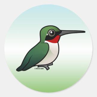 Ruby-throated Hummingbird Classic Round Sticker