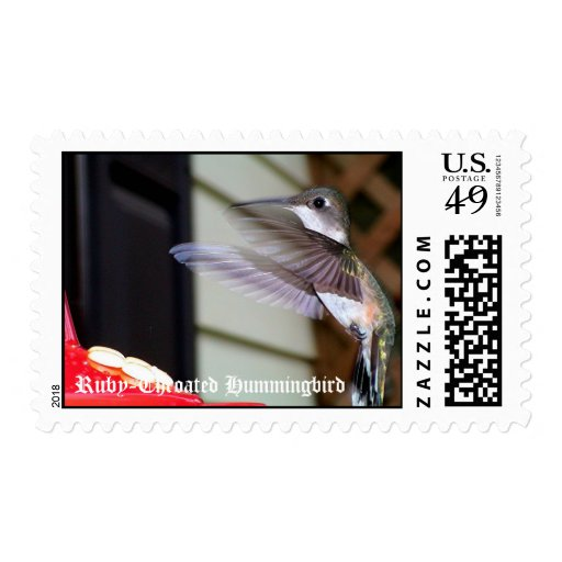 Ruby-Throated Hummingbirds 2003-0225, Ruby-Thro... Stamps