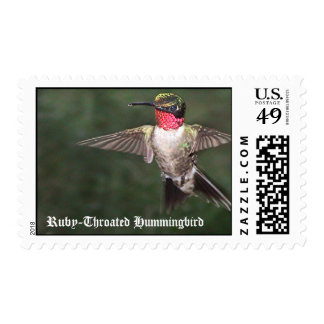 Ruby-Throated Hummingbirds 2005_0128, Ruby-Thro... Stamp