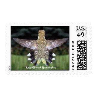 Ruby-Throated Hummingbirds 2005_0524a, Ruby-Thr... Postage