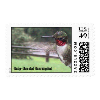 Ruby-Throated Hummingbirds 2005_0638, Ruby-Thro... Postage Stamp