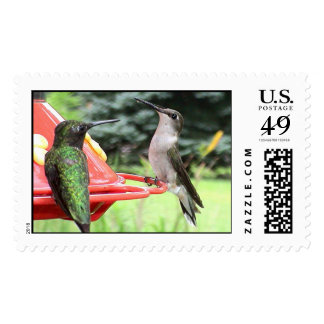 Ruby-Throated Hummingbirds 2005_0793 Postage
