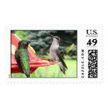 Ruby-Throated Hummingbirds 2005_0793 Postage