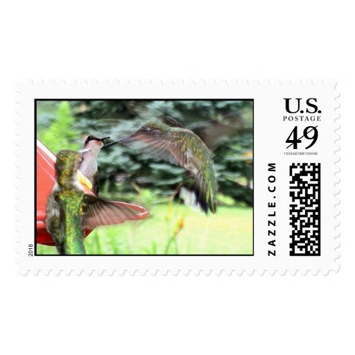 Ruby-Throated Hummingbirds 2005_0808 Postage Stamp