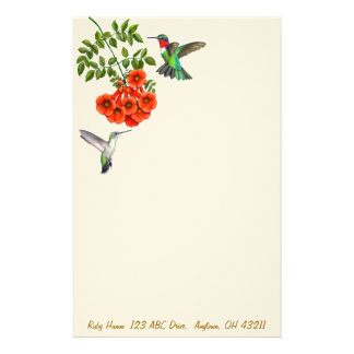 Ruby Throated Hummingbirds in Red Trumpet Vines St Stationery Design