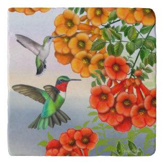 Ruby Throated Hummingbirds Stone Trivet Trivets