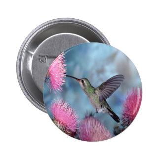 Rubythroat Hummingbird Pinback Button