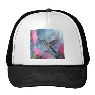 Rubythroat Hummingbird Hats