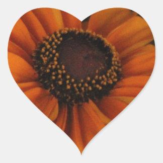 Rudbeckia Heart Sticker