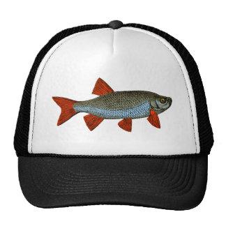 Rudd woodcut, 2013 version trucker hat