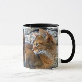 Ruddy Abyssinian Female Cat Mug