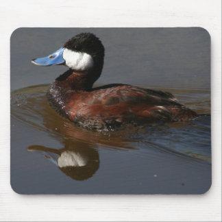 Ruddy Duck Bird Wildlife Animal Pond Mousepad