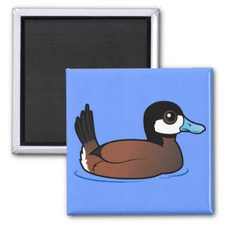 Ruddy Duck Magnet