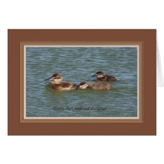 Ruddy duck mom and ducklings_6989 card