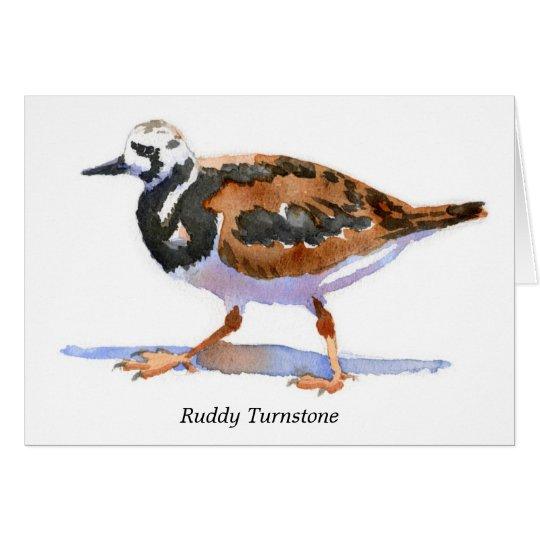 Ruddy Turnstone Card
