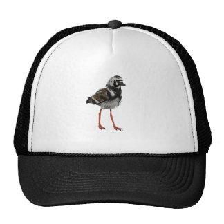 Ruddy Turnstone Trucker Hat