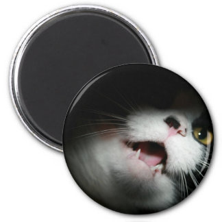 Rude Cat Custom and Sayings 2 Inch Round Magnet