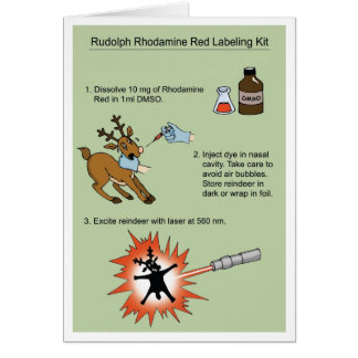 Rudolph Rhodamine Kit Card