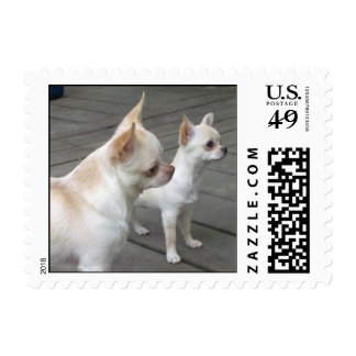 Rudy and Lucy Postage