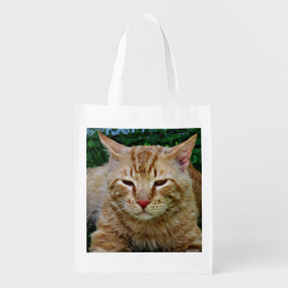 """Rudy"" The Cat Reusable Grocery Bag"