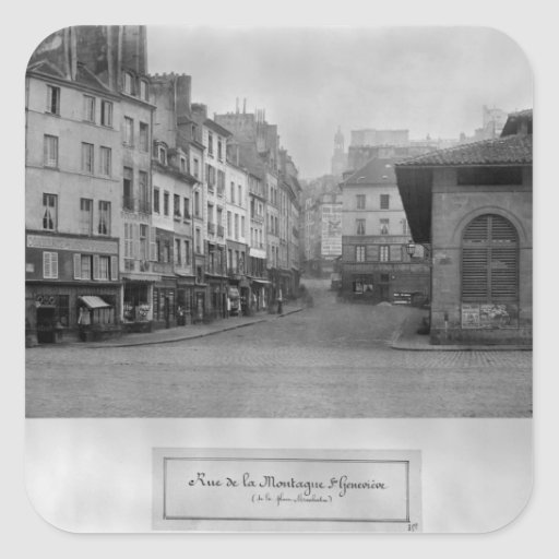 Rue de la Montagne Sainte-Genevieve, Paris Square Sticker