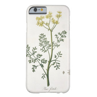Rue from 'Phytographie Medicale' by Joseph Roques Barely There iPhone 6 Case