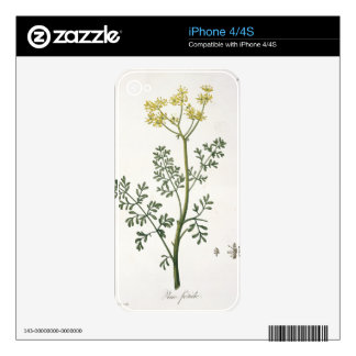 Rue from 'Phytographie Medicale' by Joseph Roques Skin For The iPhone 4