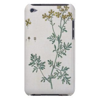Rue, plate 7 from 'A Curious Herbal', published 17 Barely There iPod Covers