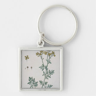 Rue, plate 7 from 'A Curious Herbal', published 17 Keychains