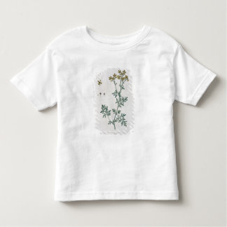 Rue, plate 7 from 'A Curious Herbal', published 17 T-shirt